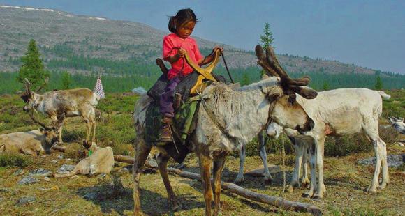 Nomaden Mädchen auf einem Rentier im Norden der Mongolei