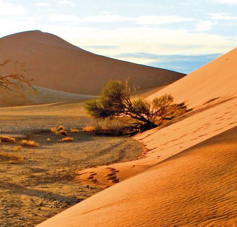 Sanddüne im Sossusvlei in Namibia