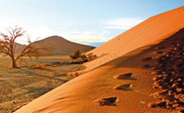 Fußspuren auf den Sanddünen des Sossusvlei in Namibia