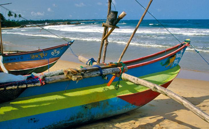 Bunte Fischerboote am Strand von Sri Lanka