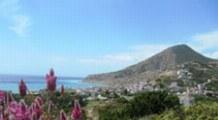 Blick auf die Küste von Kreta mit roten Blumen im Vordergrund
