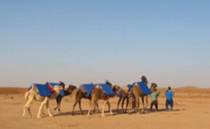 marokko gruppenreisen